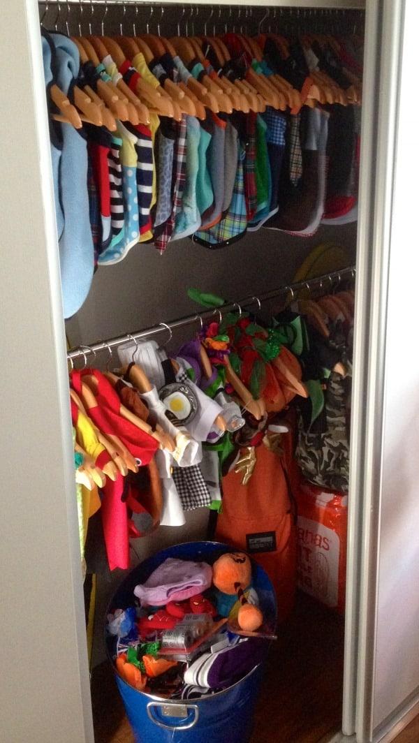 Brian Pomeranian McCue's wardrobe