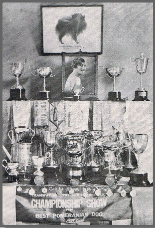 "Cups and Trophies won by the ""Leicester"" Kennel of Pomeranians The ""Leicester"" Pomeranians where owned by Mrs Sandford of Caulfield, Victoria. Mrs Sandford, prior to her marriage was the well known Dancer, Miss May Till of London."