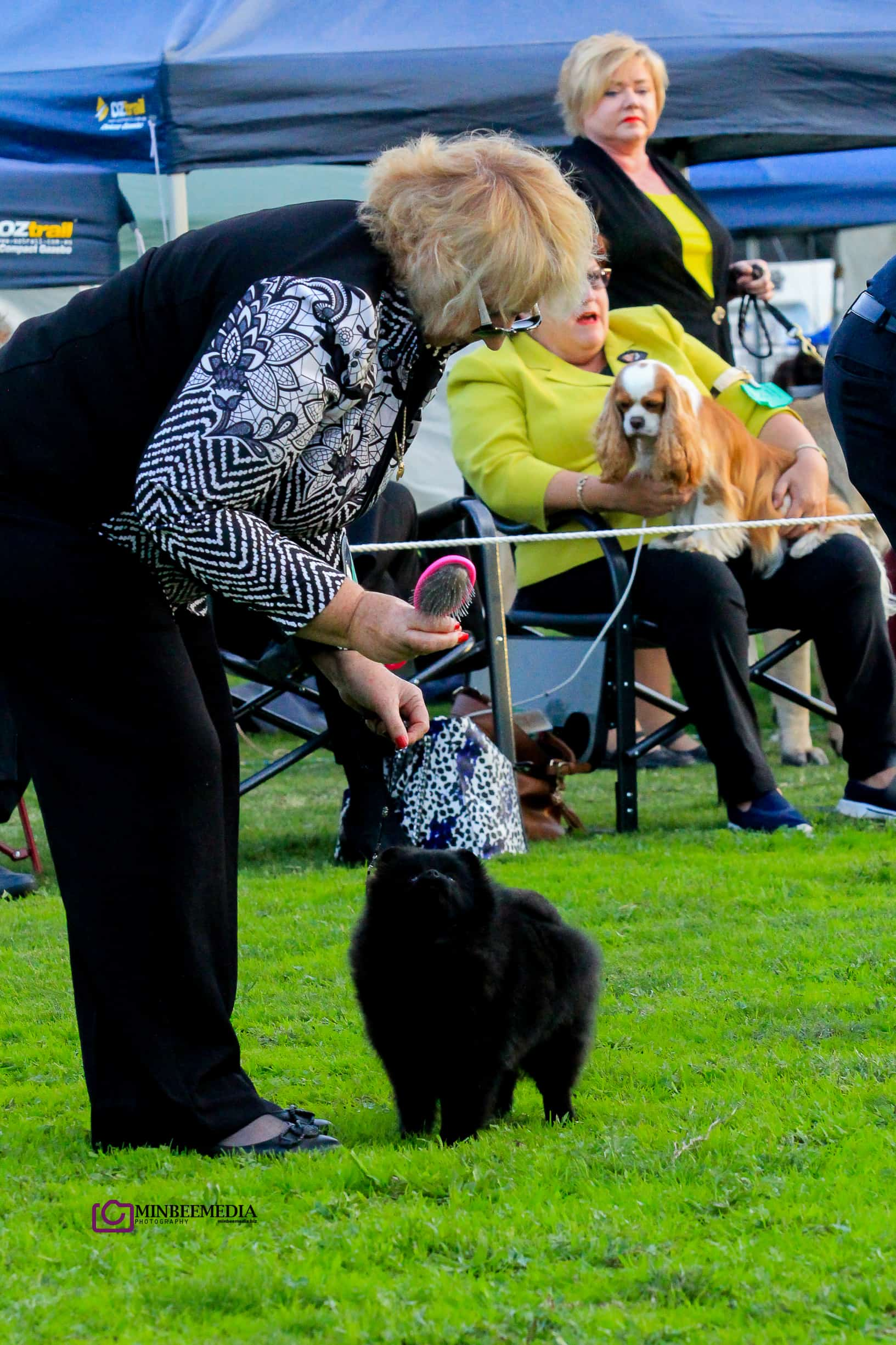Dochlaggie Blak Barbie wins best PUPPY in GROUP