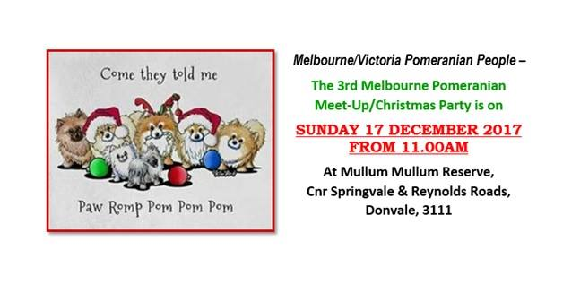 Melbourne Pomeranian Meet-Up/Christmas Party