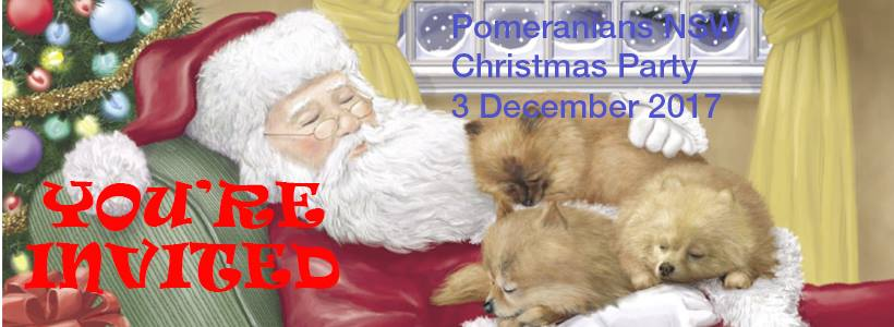 Pomeranians NSW Christmas Party 2017- 3rd December, 2017