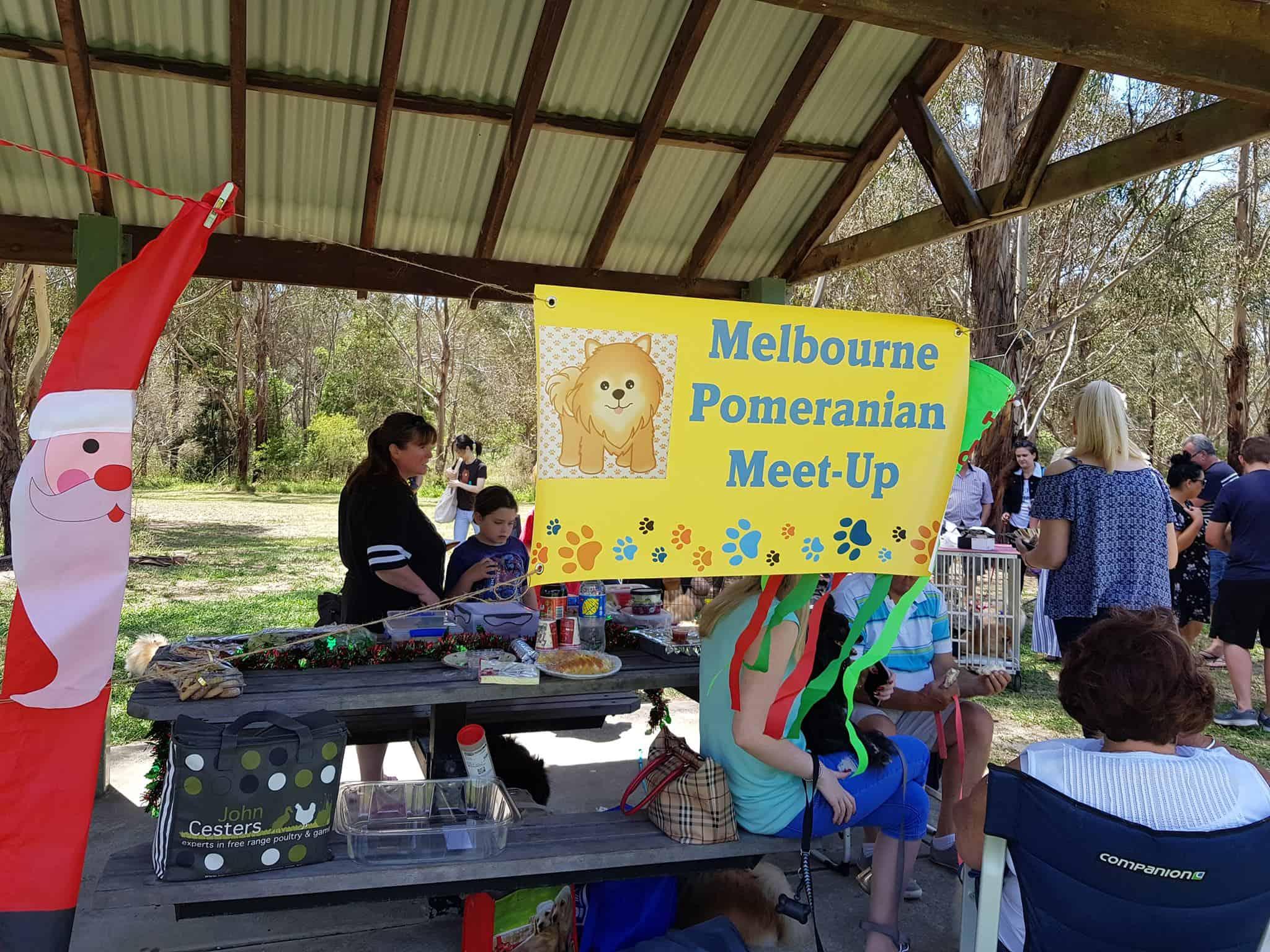 Melbourne Pomeranian Meet-Up/Christmas Party