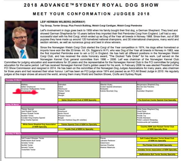 Pomeranian Judging at 2018 Sydney Royal Dog Show