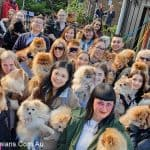 Melbourne Pomeranian Meet Up Winter 2019