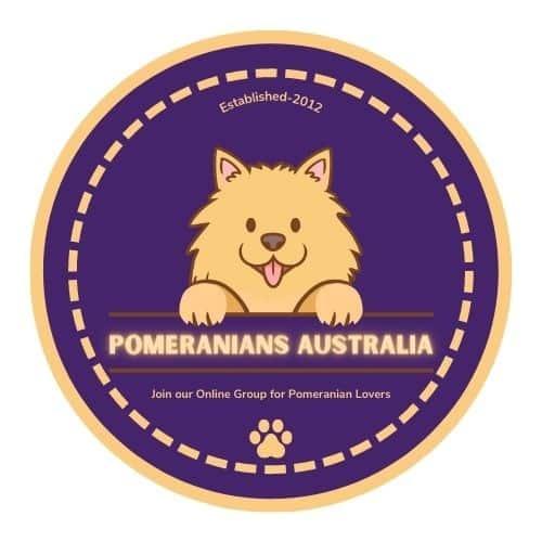 Pomeranians Australia Group